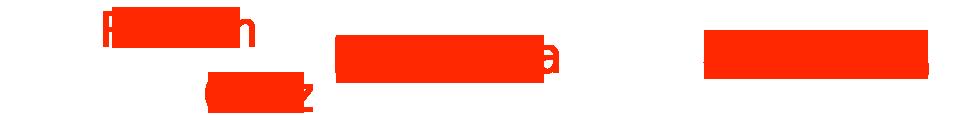 logo-ramon-ortiztrans